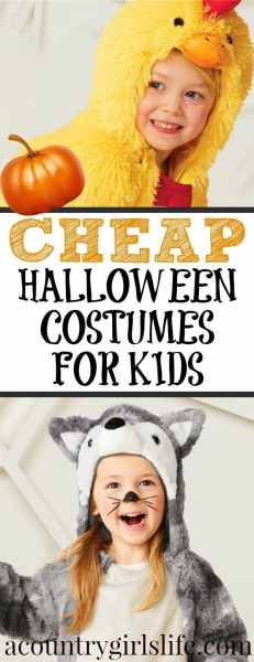 Best Kids Halloween Costumes on a Budget- No DIY Required!