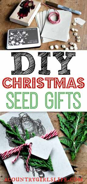 DIY Christmas Gift Seed Packets (No Gardening Required!)