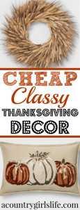 Budget Friendly Fall & Thanksgiving Home Decor