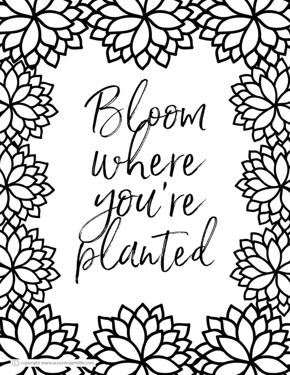 Free Printable Coloring Pages For Adults In Florals And Succulents! - A  Country Girl's Life