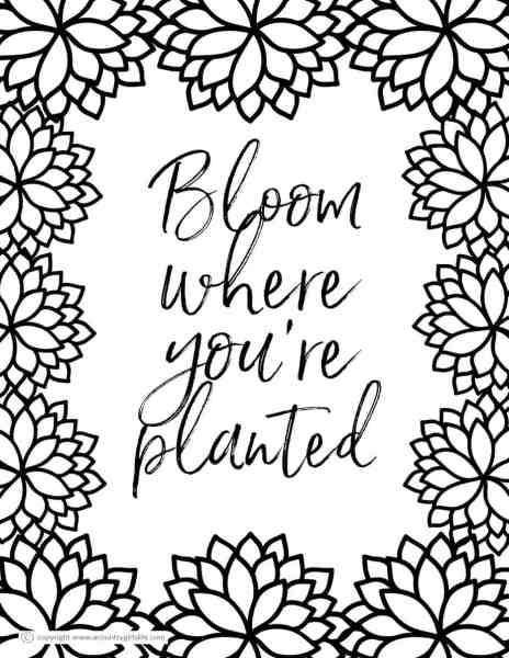 Free Printable Coloring Pages For Adults In Florals And Succulents