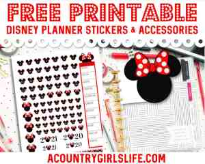 FREE Printable Disney Planner Stickers + {CUTE} Tabs & Accessories
