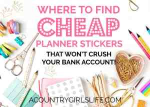 Where to Buy Cheap Planner Stickers & Accessories That Won't Crush Your Bank Account!