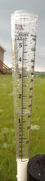 """The rain gauge recorded 1.25"""" of rain in about an hour on Monday, June 15, 2009."""