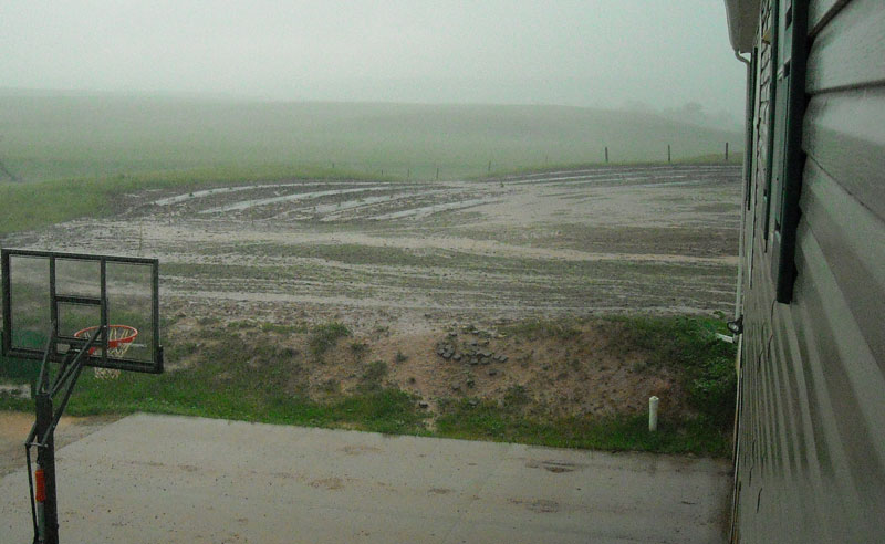 In the distance you can see our shelter belt and newly planted grass are soaked by the rain.