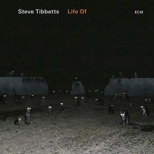 Steve-Tibbetts-life-of