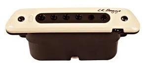 LR-Baggs-M80-Review