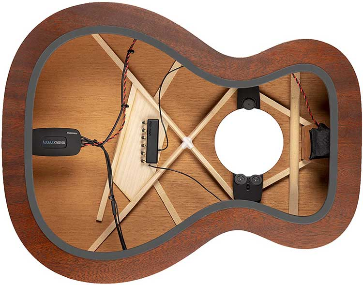 Fishman PowerTap Rare-Earth and Infinity acoustic guitar pickup system