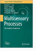 Multisensory Processes The Auditory Perspective Editors: Adrian K. C. Lee, Mark T. Wallace, Allison B. Coffin, Arthur N. Popper, and Richard R. Fay