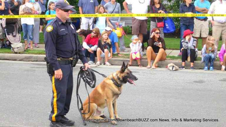 K-9 Police Work. Separating Fact from Fiction. Atlantic City Public Safety.