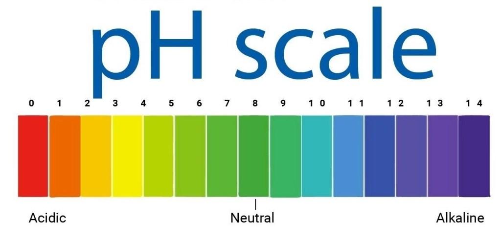 Qual'è il giusto ph da mantenere in un impianto di acquaponica? Pesci e piante. PH alcaino, basico o acido? Acquaponica.blog