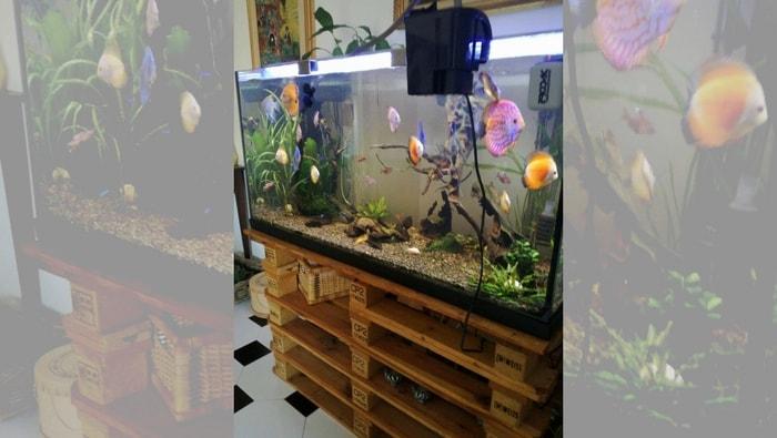 mobile per acquario