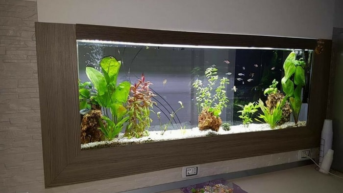 l 39 importanza del mobile per acquario acquario come fare