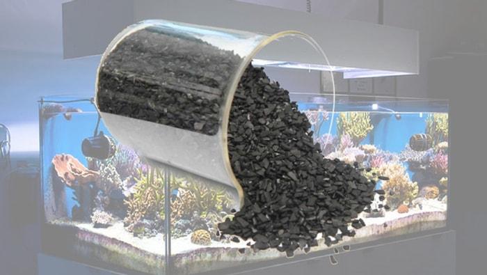 Il ruolo del carbone attivo nell'acquario marino