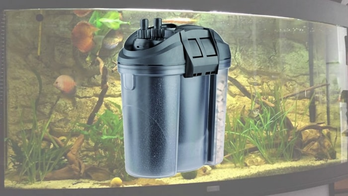 La maturazione del filtro come nasce il ciclo dell 39 azoto for Filtro vasca pesci