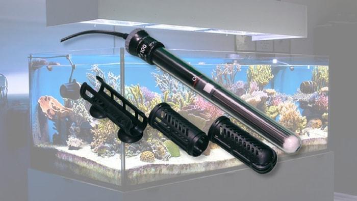 riscaldatore acquario marino
