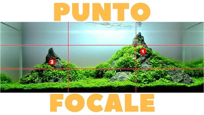 regola aurea iwagumi punto focale