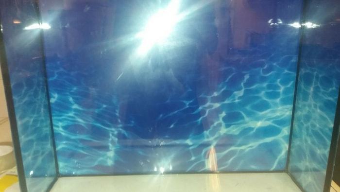 sfondo acquario tv
