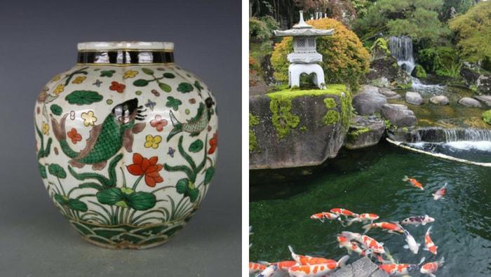 acquariofilia cinese e giapponese