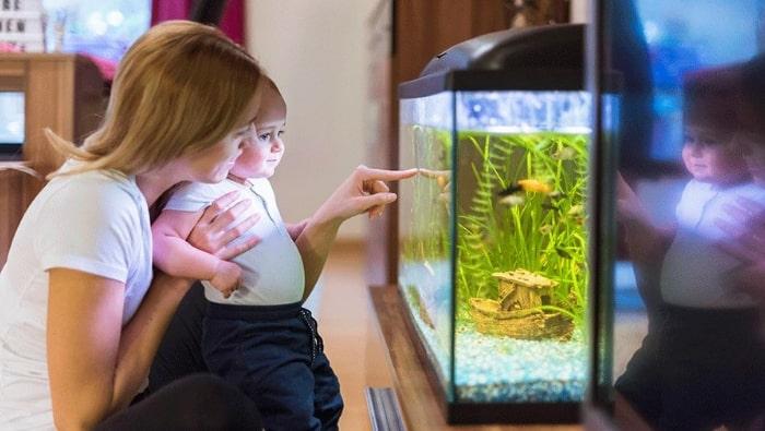 acquario per bambini