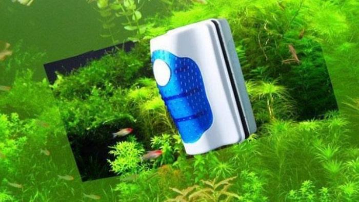 pulire i vetri di un acquario