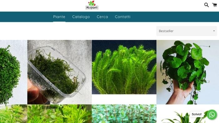 comprare piante da acquario