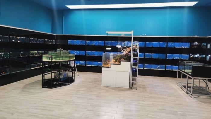bio lab acquari