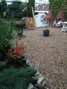 seaside garden in the suburbs - shells in the garden instead of pebbles or stones (19)