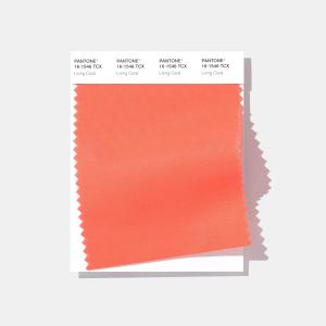 Pantone® Living Coral é a cor do ano de 2019 - Acredite.Co 7