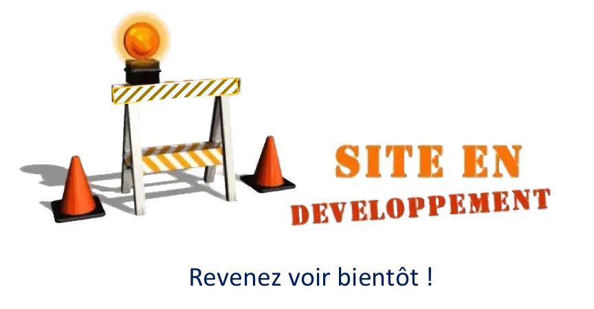 site en développement