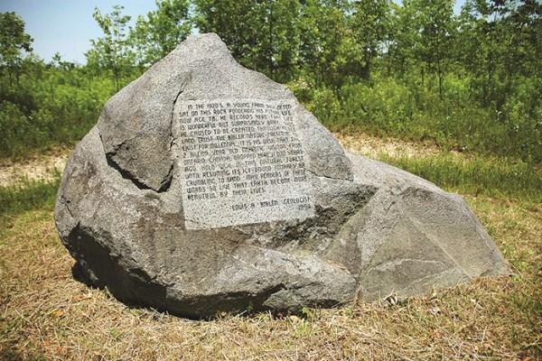 Photo of Bibler Nature Preserve