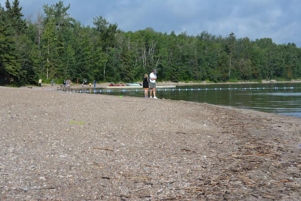 Beach at Pigeon Lake PP
