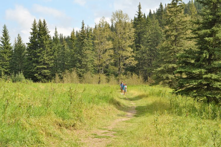 hiking-trail-in-cypress-hills-pp