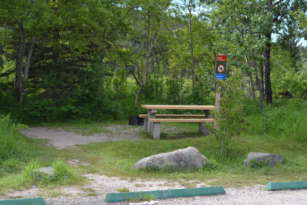 Picnic table and firepit in day use area at Castle River Campground