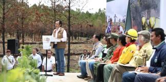 Este jueves, dio inicio la Campaña Nacional de Restauración Forestal en San Juan del Monte y Las Vigas, donde el pasado mes de marzo, un incendio consumió 480 hectáreas de bosque.