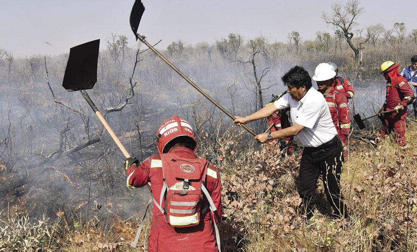 El presidente de Bolivia, Evo Morales confirmó la extinción de incendios en la zona más afectada por el fuego en su país desde hacía semanas y el inicio de la fase de recuperación de áreas arrasadas.