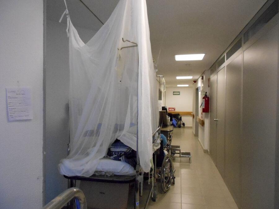 Durante esta semana, Veracruz sumó 558 casos más de dengue, además de al menos 18 muertes por esta enfermedad.