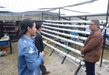 """En el marco del Día Mundial de la Alimentación, la Secretaría de Desarrollo Social (SEDESOL), en coordinación con la Universidad Veracruzana (UV), organizó la conferencia """"Estrategia Sembremos Bienestar Común, Módulos hacia la Autosuficiencia Alimentaria y Mujeres emprendedoras"""" para concientizar a la población."""