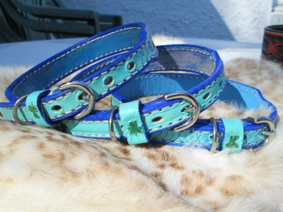 Custom tooled leather dog collars finished in Kelly green and turquoise with ultramarine blue border.