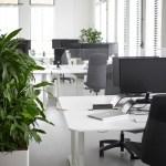 Schreibtisch Oder Tisch Schutz Gross Acrylglasplattenshop De