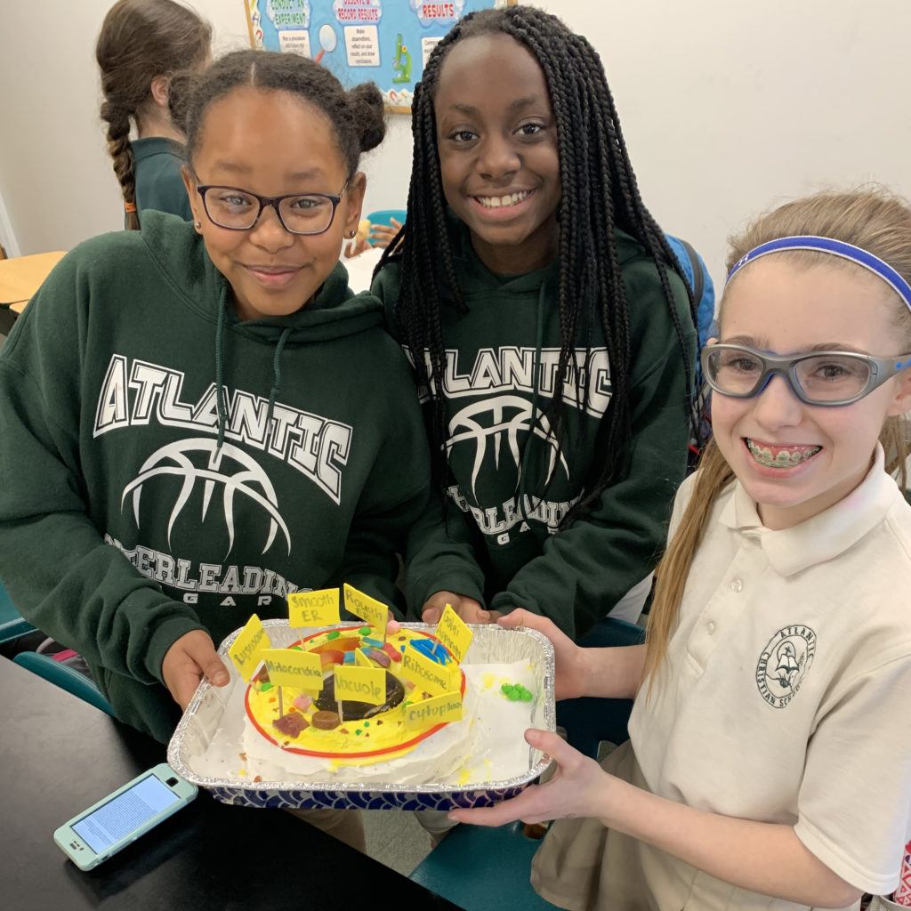 6th Grade Science Class Creates Edible Cell Models