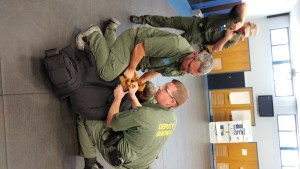 Handcuffing drills during In Service Training