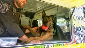 K-9 in the Operation CONE Ice Cream Truck