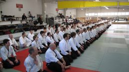 STAGE AIKIDO TOURNEFEUILLE 2012 01