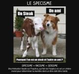 specisme_0005