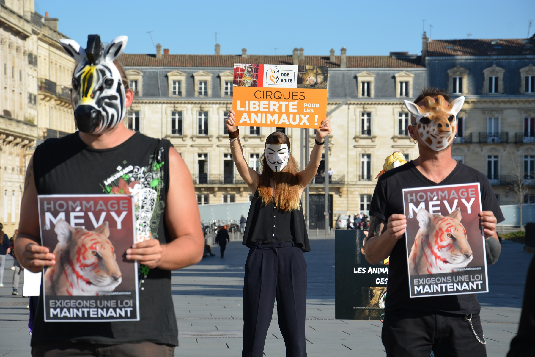 manifestation_mairie_bordeaux_animaux_cirques_triangle4