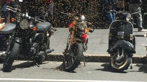 An image of bee swarm on the move