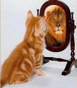 Le besoin d'estime de soi