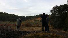 Birding en la comarca de Utiel-Requena