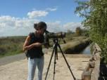 Birding en la Marjal dels Moros